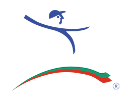 Lean Institute Bulgaria official logo